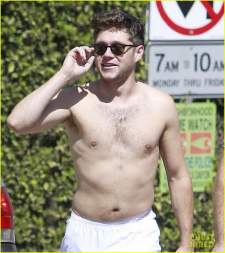 Download Niall Horan Shirtless Pictures - One Direction